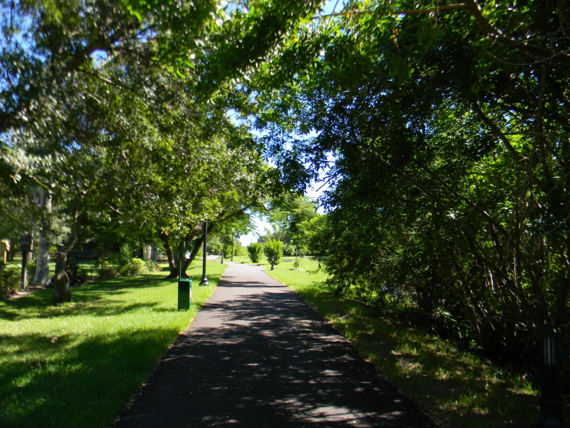 picture of the linear park path shaded by trees