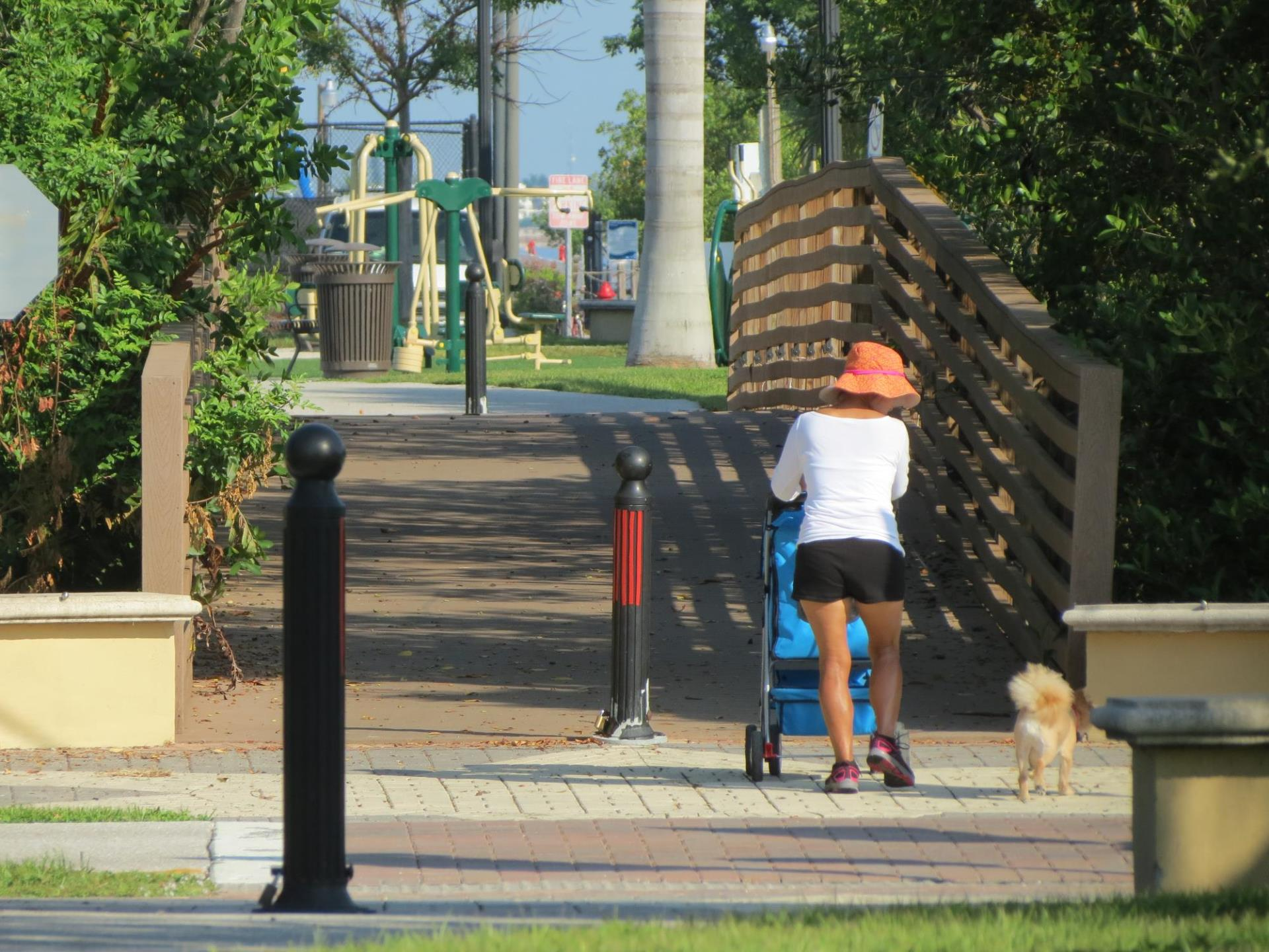 person with a dog pushing a stroller over a bridge leading to the park