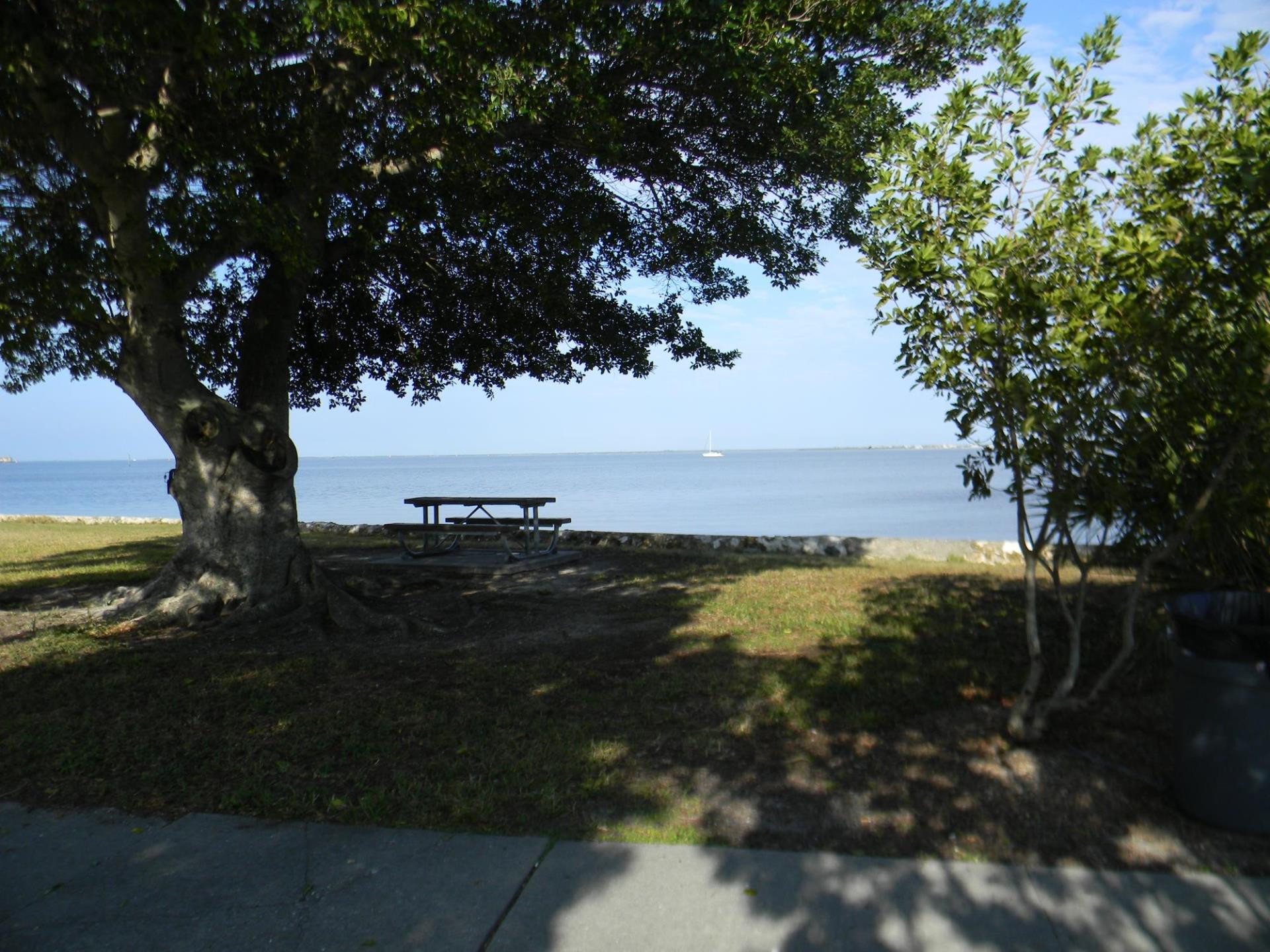 Photo of Tree, picnic table along harbor at Gilchrest Park.
