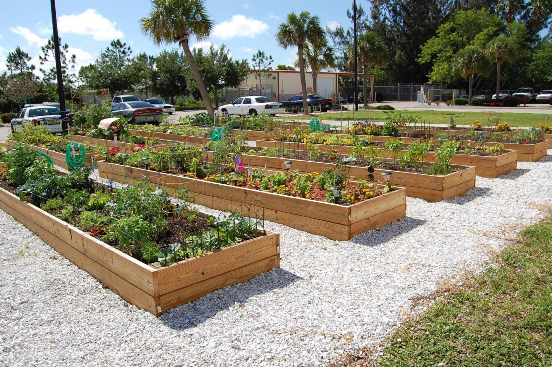 Photo of Community Garden at Public Safety Complex