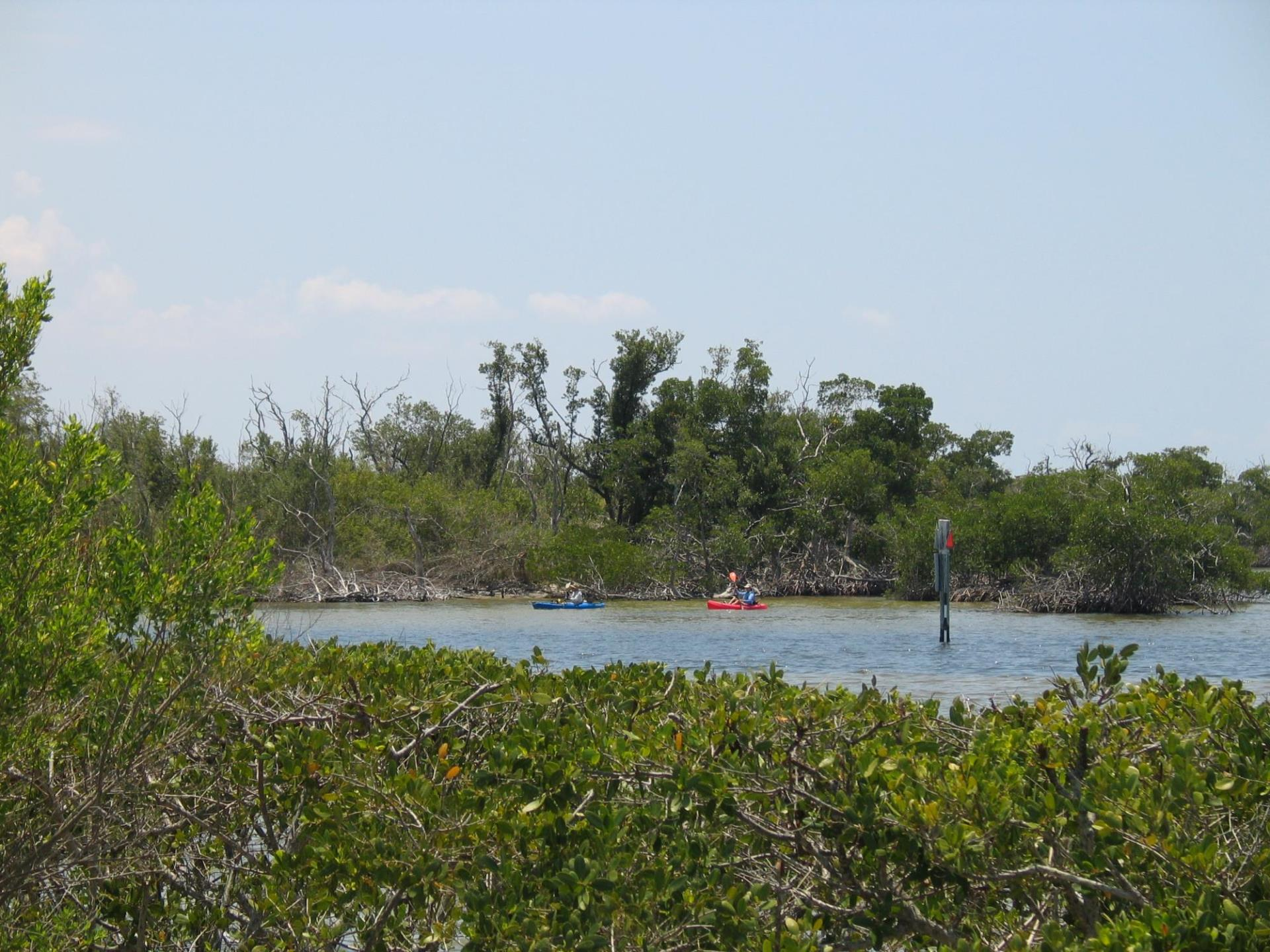 Kayakers in the water at Ponce Park