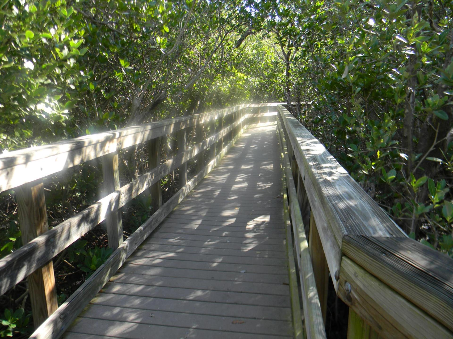 Ponce Park boardwalk