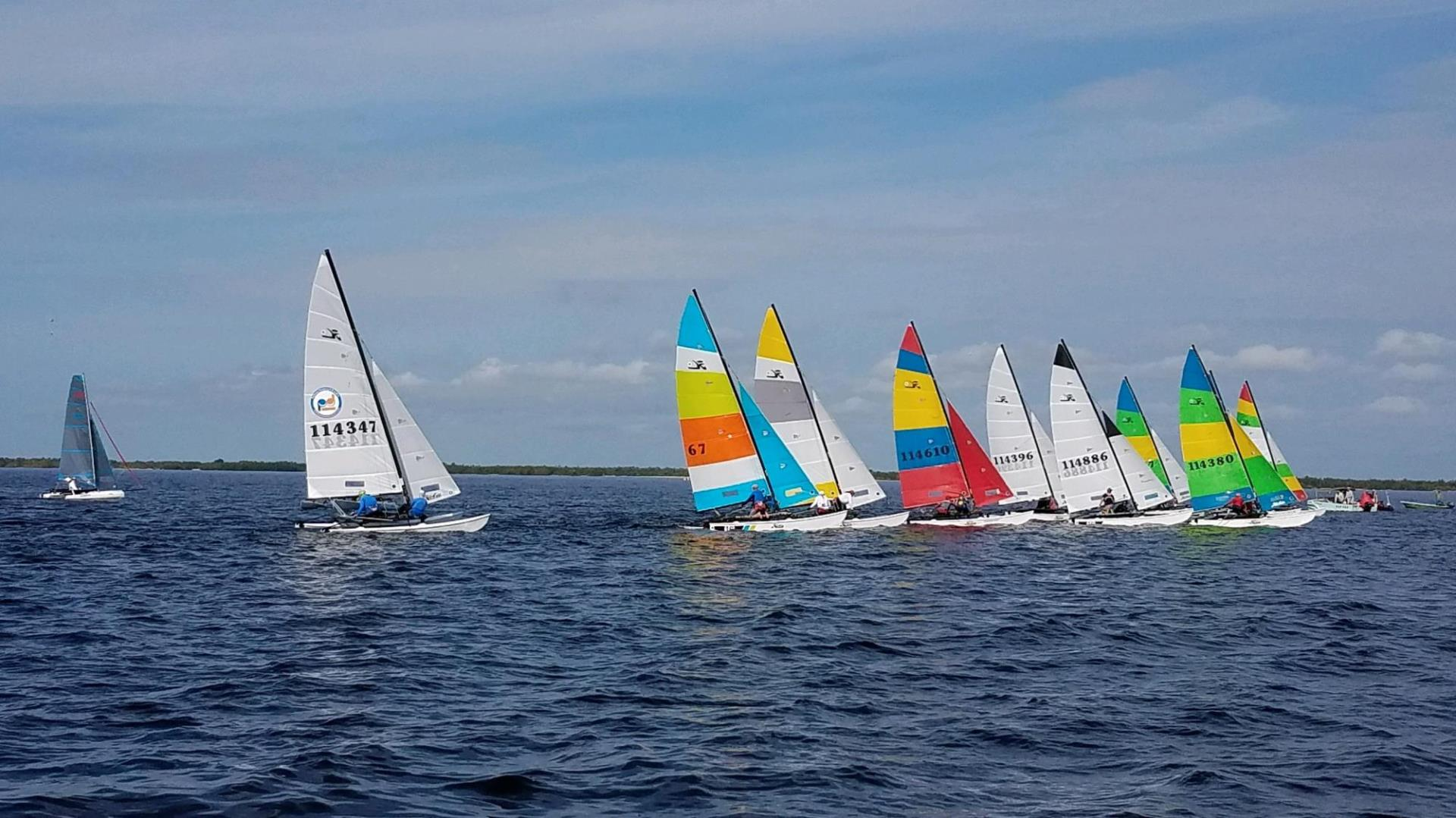 sailboats with bright colored sails